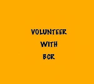Volunteer with Barnet Community Radio
